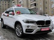 Прокат авто для свадьбы,  новый БМВ Х6